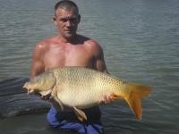 Berek Fisch Park Group